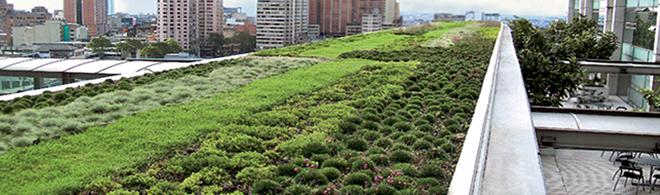 cubiertasverdes